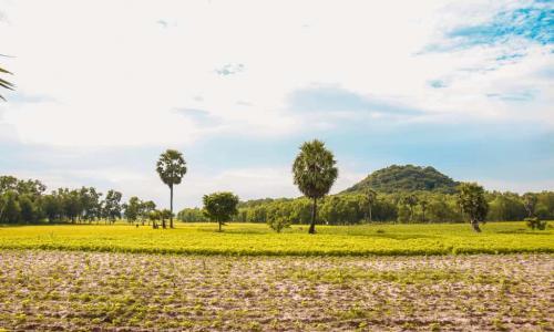 Khám phá vùng Thất Sơn Châu Đốc với 7 địa điểm tuyệt vời | Chothuexecantho24h.com